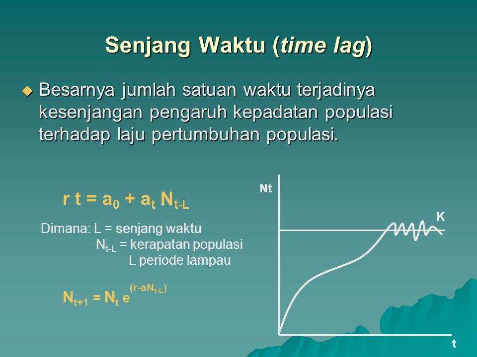 Senjang Waktu (time lag)