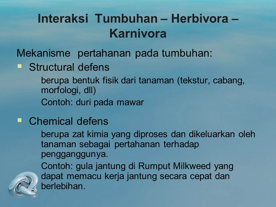 Interaksi Tumbuhan – Herbivora – Karnivora