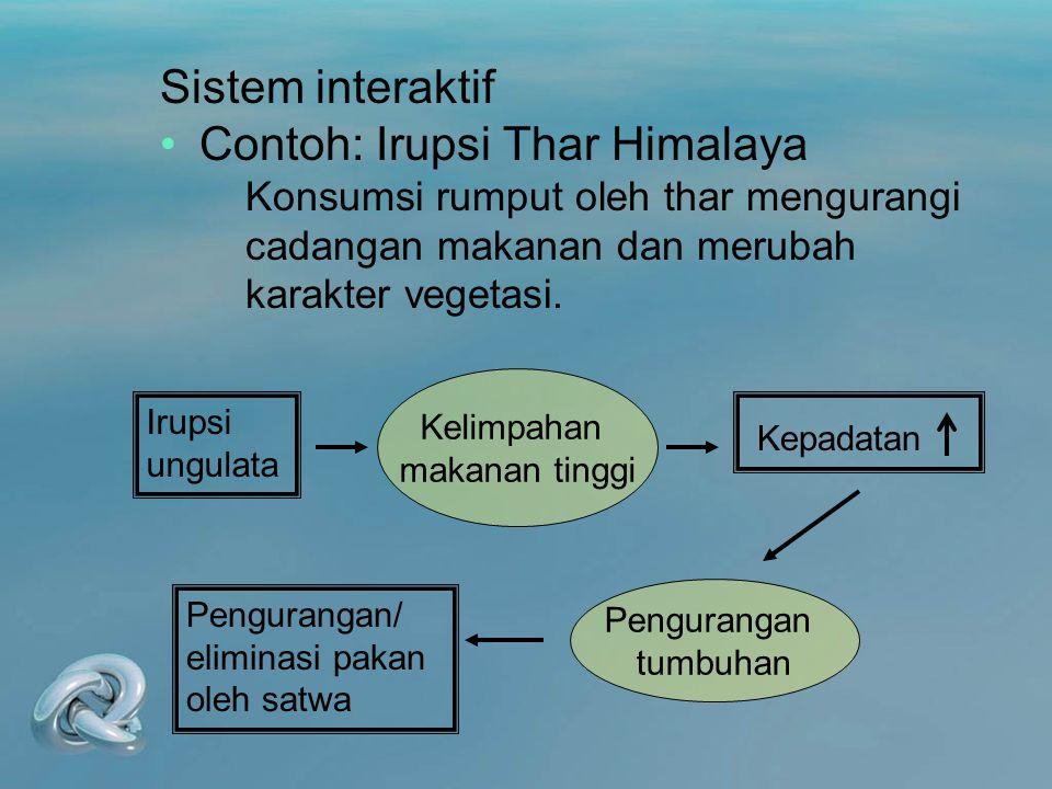 Contoh: Irupsi Thar Himalaya