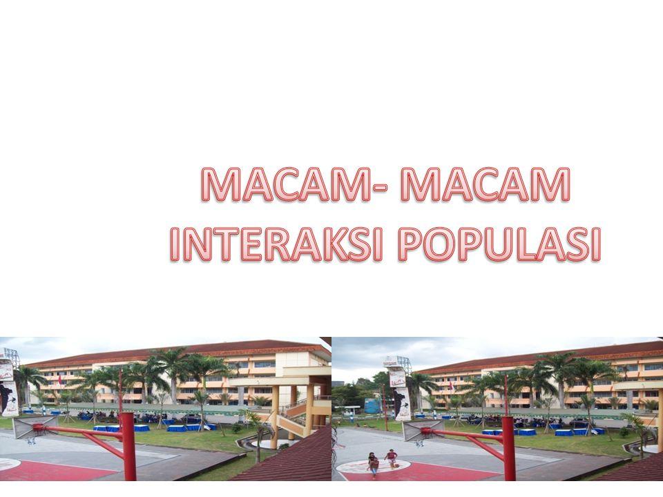 MACAM- MACAM INTERAKSI POPULASI