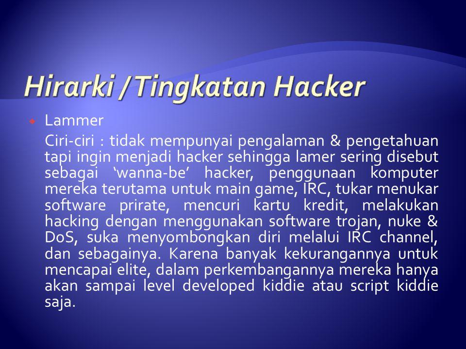 Hirarki / Tingkatan Hacker