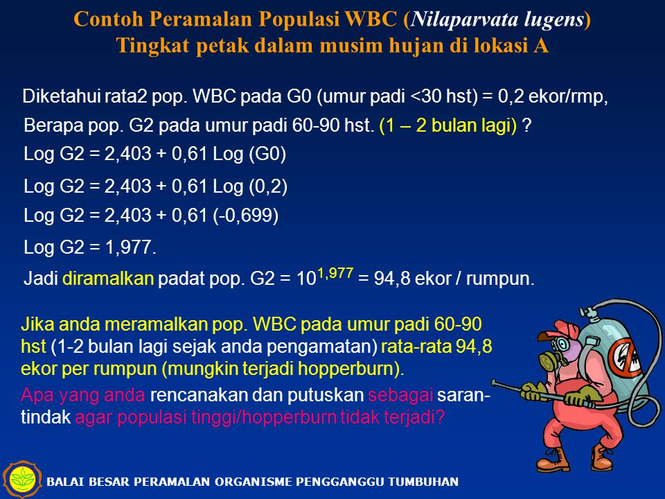 Contoh Peramalan Populasi WBC (Nilaparvata lugens)