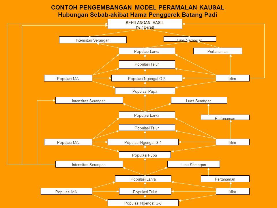 CONTOH PENGEMBANGAN MODEL PERAMALAN KAUSAL