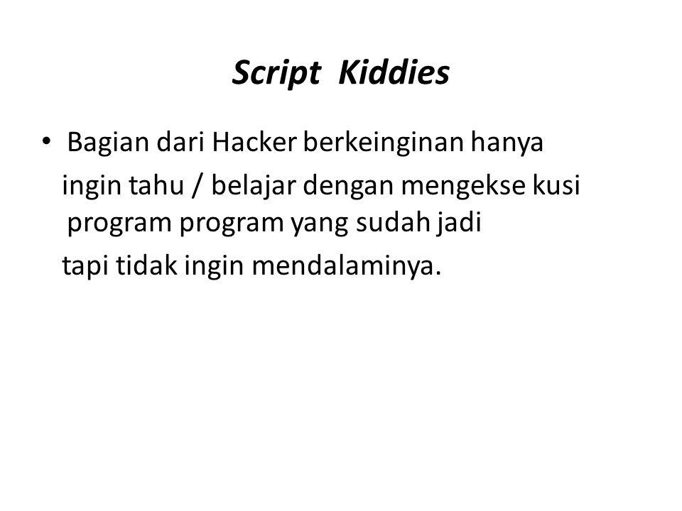 Script Kiddies Bagian dari Hacker berkeinginan hanya