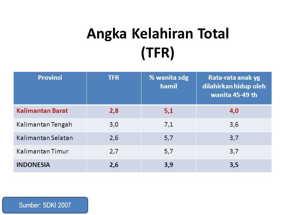 Angka Kelahiran Total (TFR)
