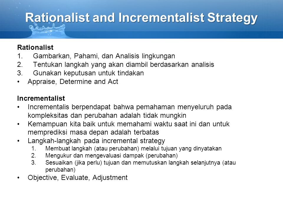 Rationalist and Incrementalist Strategy