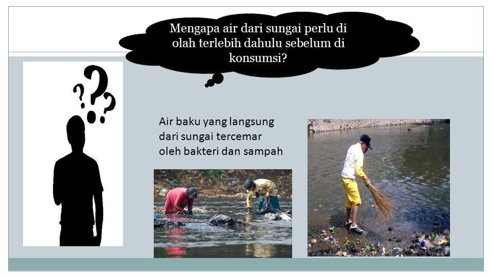 Mengapa air dari sungai perlu di olah terlebih dahulu sebelum di konsumsi