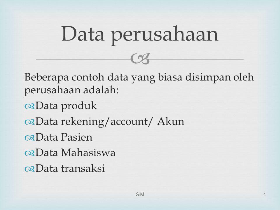 Data perusahaan Beberapa contoh data yang biasa disimpan oleh perusahaan adalah: Data produk. Data rekening/account/ Akun.