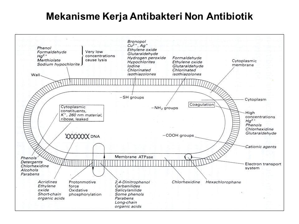 Mekanisme Kerja Antibakteri Non Antibiotik