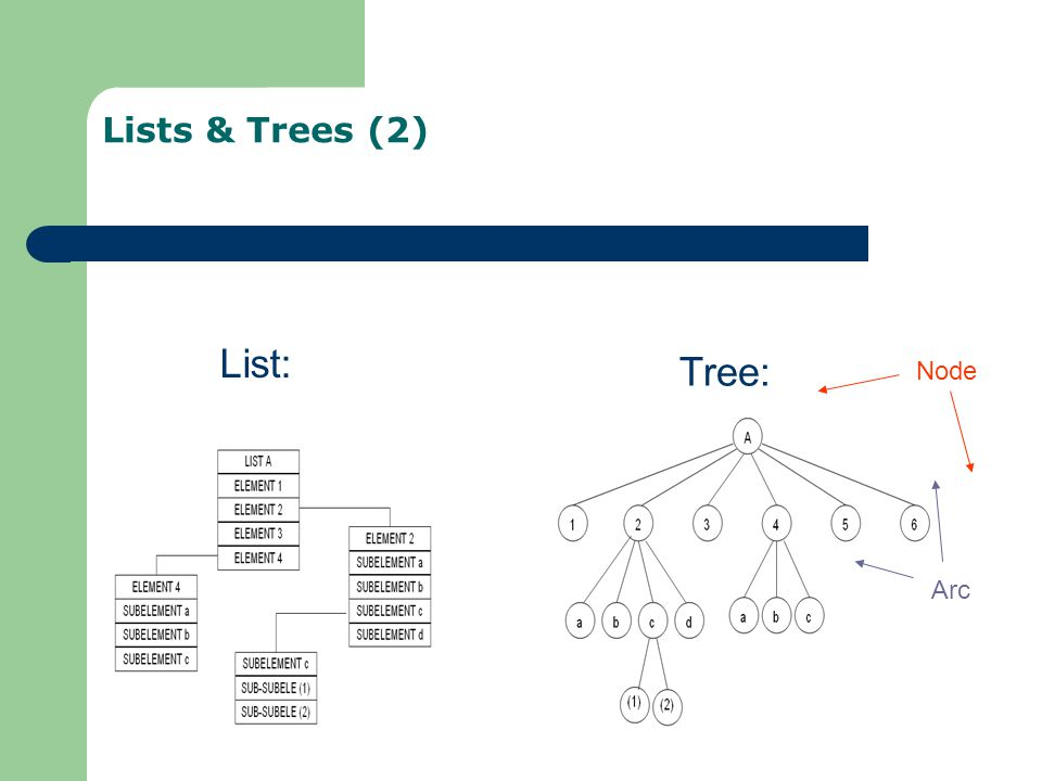 Lists & Trees (2) List: Tree: Node Arc