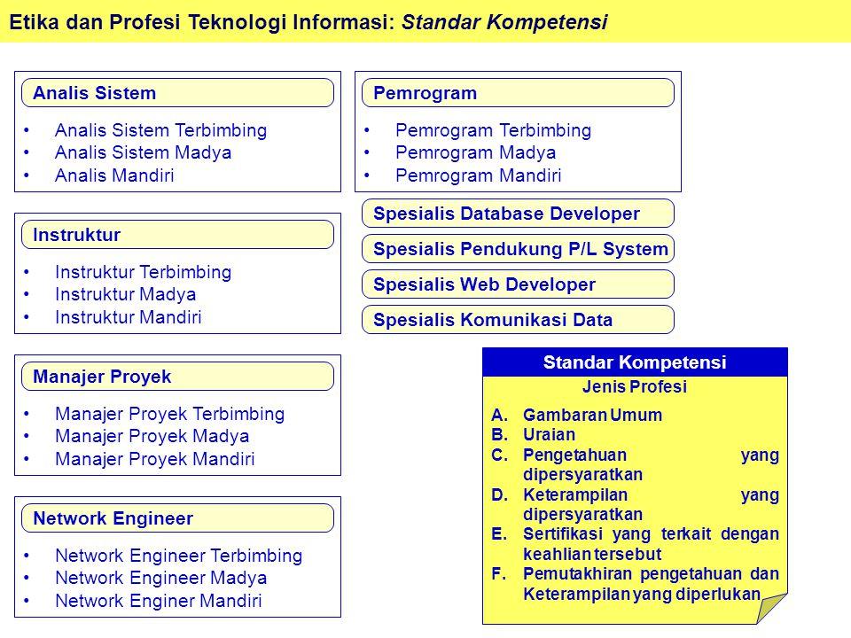 Analis Sistem Terbimbing Analis Sistem Madya Analis Mandiri
