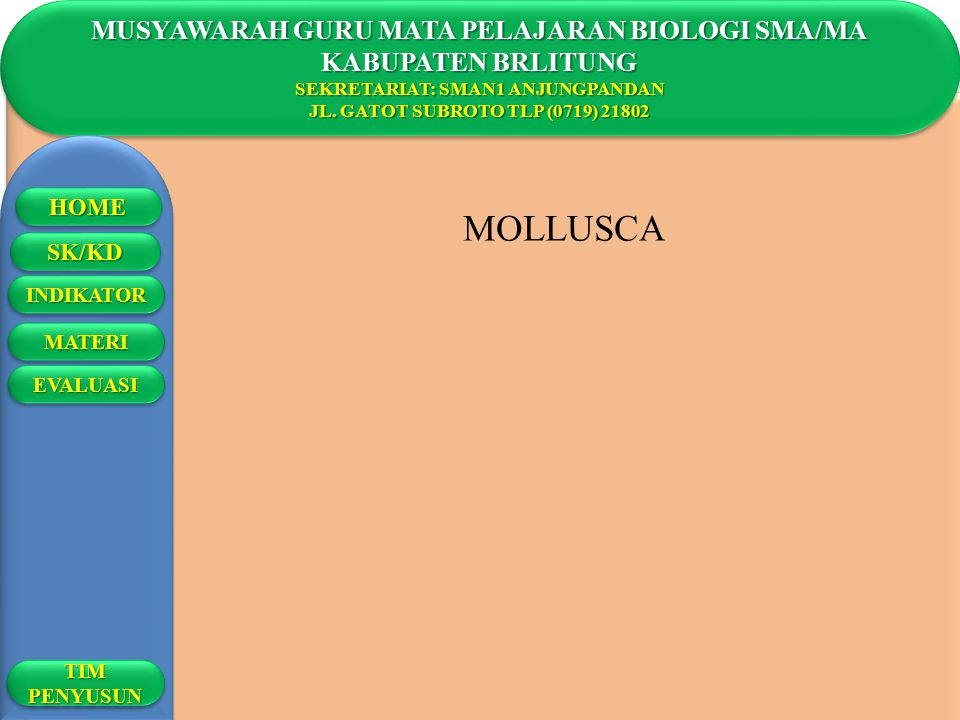 MOLLUSCA MUSYAWARAH GURU MATA PELAJARAN BIOLOGI SMA/MA
