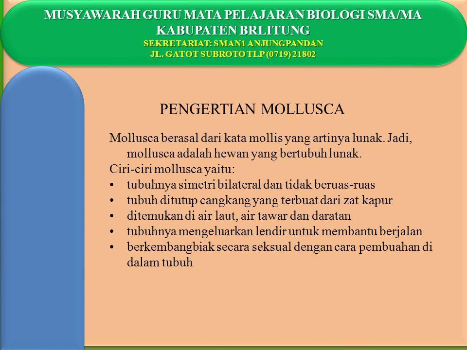 PENGERTIAN MOLLUSCA MUSYAWARAH GURU MATA PELAJARAN BIOLOGI SMA/MA