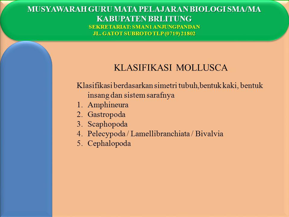 KLASIFIKASI MOLLUSCA MUSYAWARAH GURU MATA PELAJARAN BIOLOGI SMA/MA