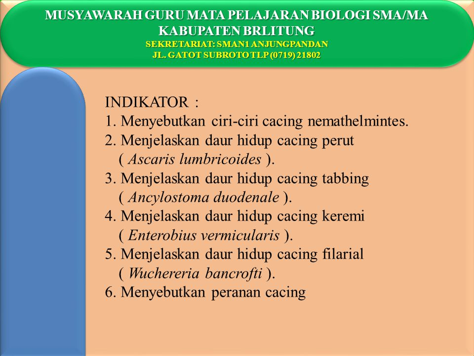 1. Menyebutkan ciri-ciri cacing nemathelmintes.
