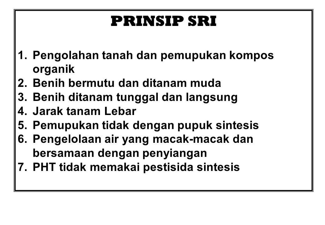 PRINSIP SRI Pengolahan tanah dan pemupukan kompos organik