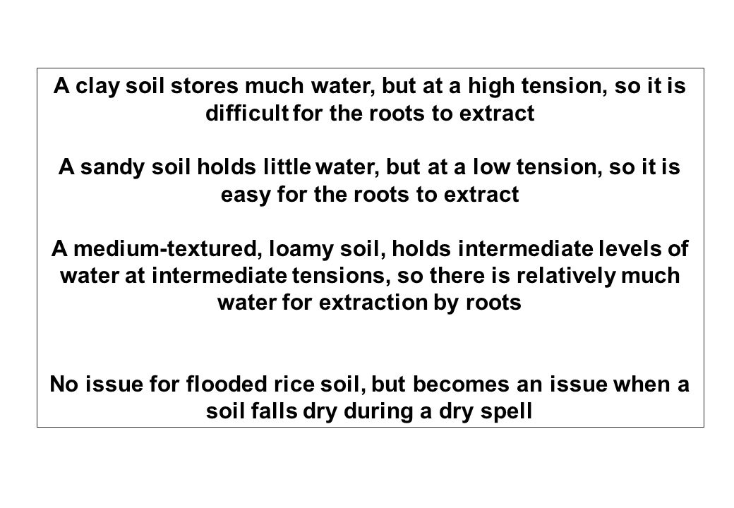 A clay soil stores much water, but at a high tension, so it is difficult for the roots to extract