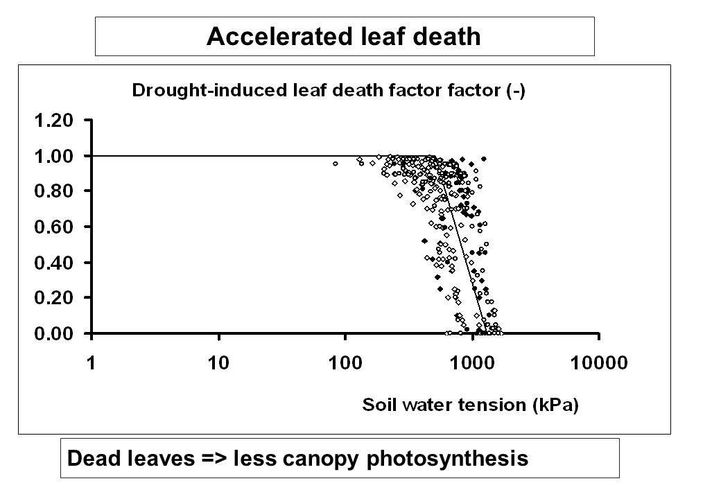Accelerated leaf death