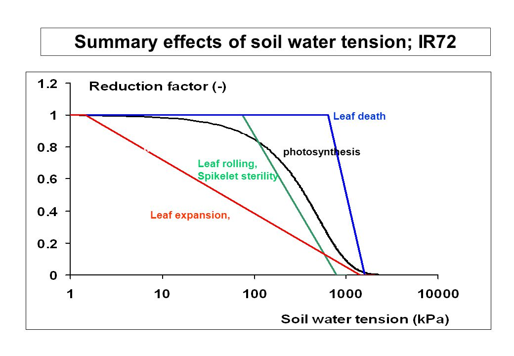 Summary effects of soil water tension; IR72