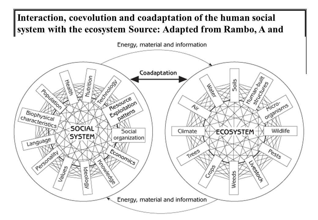 Interaction, coevolution and coadaptation of the human social system with the ecosystem Source: Adapted from Rambo, A and Sajise, T (1985) An Introduction to Human Ecology Research on Agricultural Systems in Southeast Asia, University of the Philippines, Los Banos, Philippines