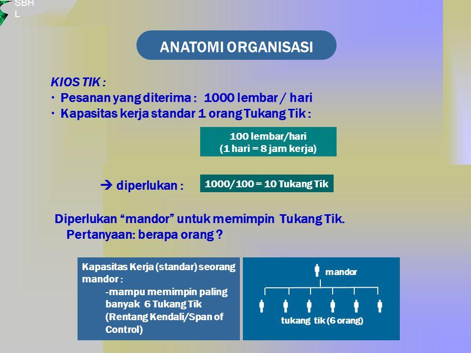 ANATOMI ORGANISASI      