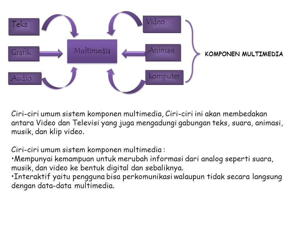 Teks Video Multimedia Animasi Grafik komputer Audio
