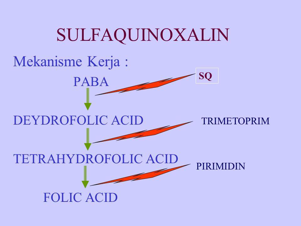 SULFAQUINOXALIN Mekanisme Kerja : PABA DEYDROFOLIC ACID
