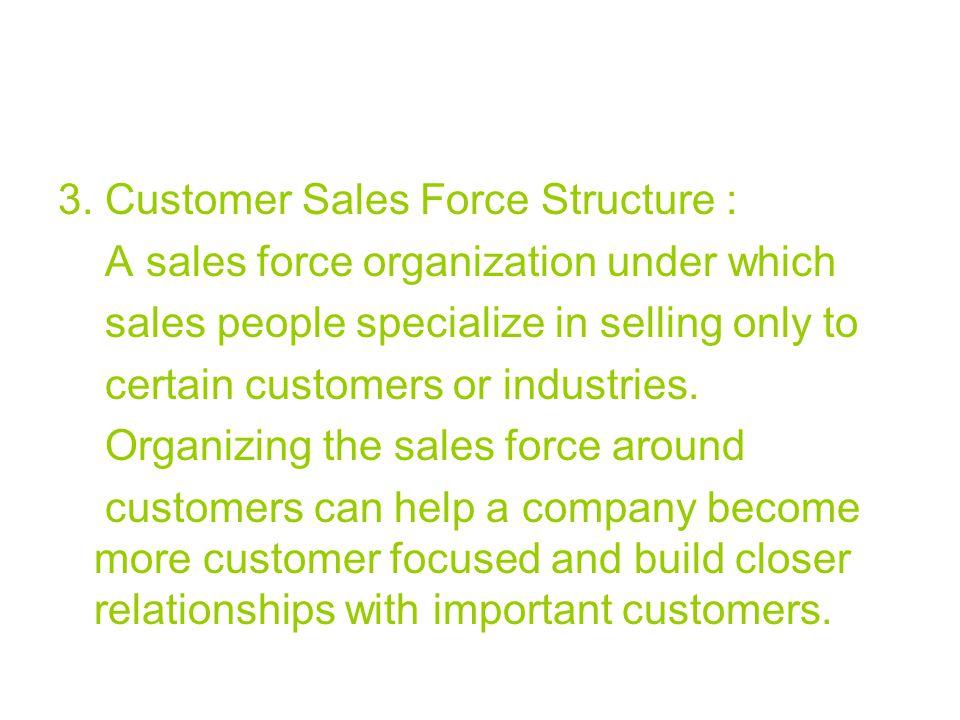 3. Customer Sales Force Structure :