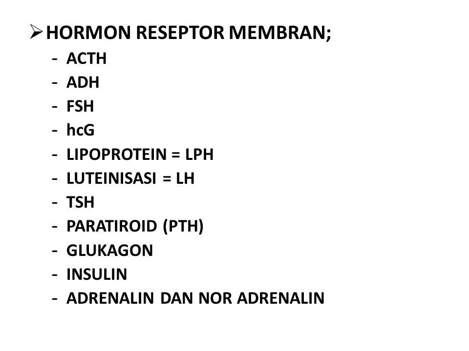 HORMON RESEPTOR MEMBRAN;