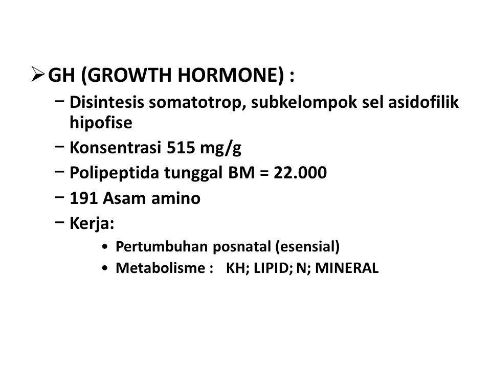 GH (GROWTH HORMONE) : Disintesis somatotrop, subkelompok sel asidofilik hipofise. Konsentrasi 515 mg/g.