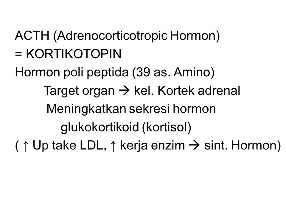 ACTH (Adrenocorticotropic Hormon)