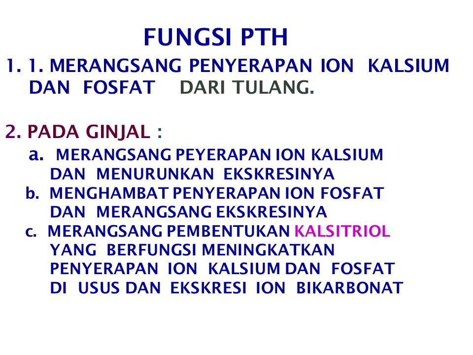 FUNGSI PTH 1. 1. MERANGSANG PENYERAPAN ION KALSIUM DAN FOSFAT DARI TULANG.