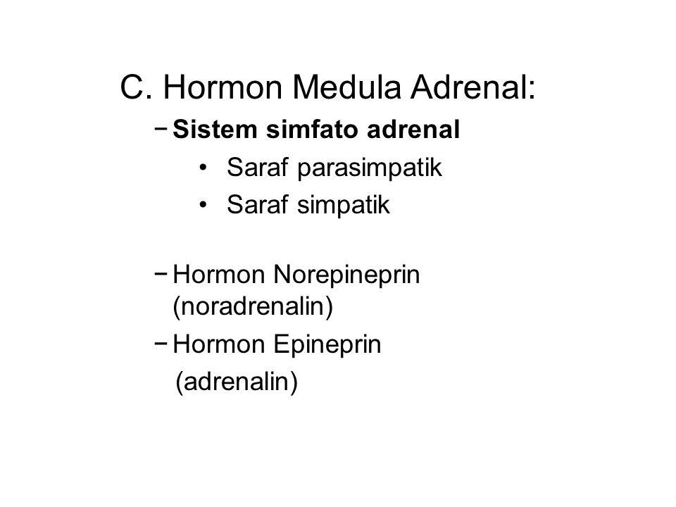 C. Hormon Medula Adrenal: