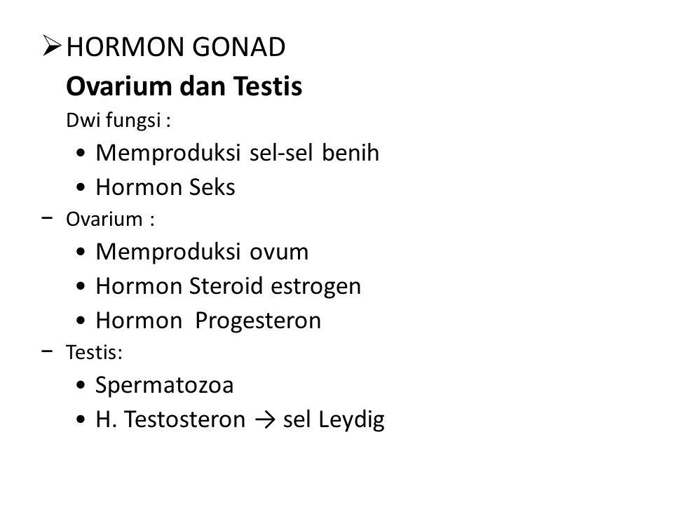 HORMON GONAD Ovarium dan Testis Memproduksi sel-sel benih Hormon Seks