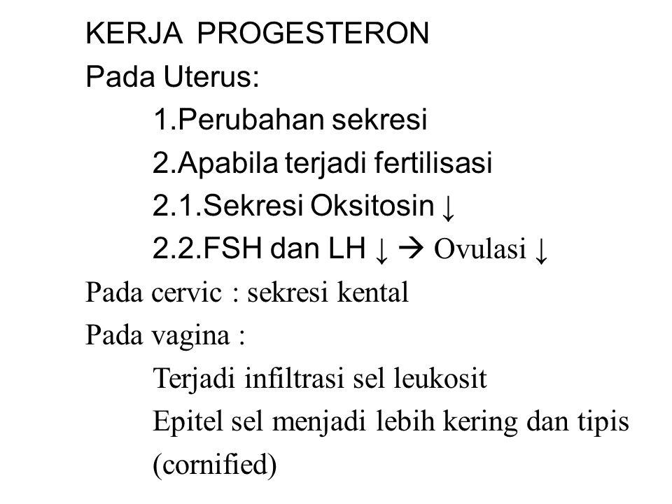 KERJA PROGESTERON Pada Uterus: 1.Perubahan sekresi. 2.Apabila terjadi fertilisasi. 2.1.Sekresi Oksitosin ↓