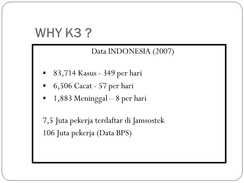WHY K3 Data INDONESIA (2007) 83,714 Kasus - 349 per hari