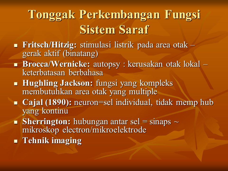 Tonggak Perkembangan Fungsi Sistem Saraf