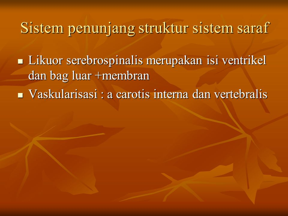 Sistem penunjang struktur sistem saraf