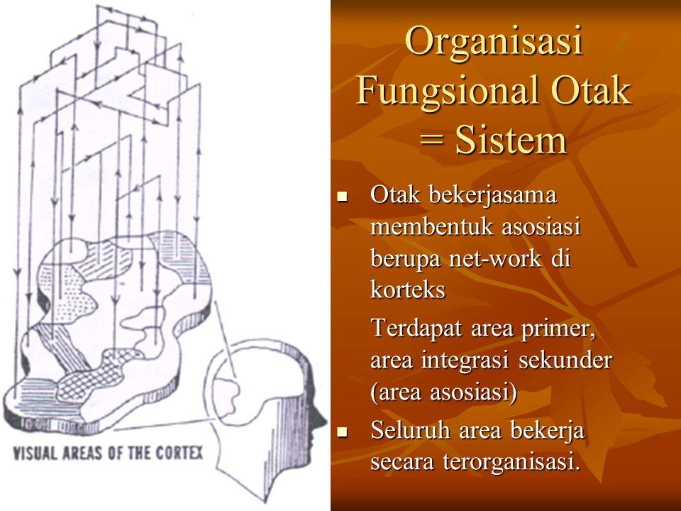 Organisasi Fungsional Otak = Sistem