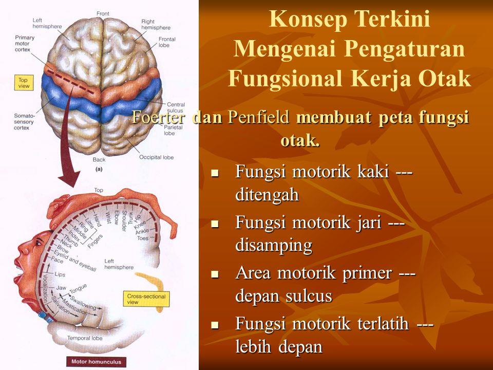Foerter dan Penfield membuat peta fungsi otak.