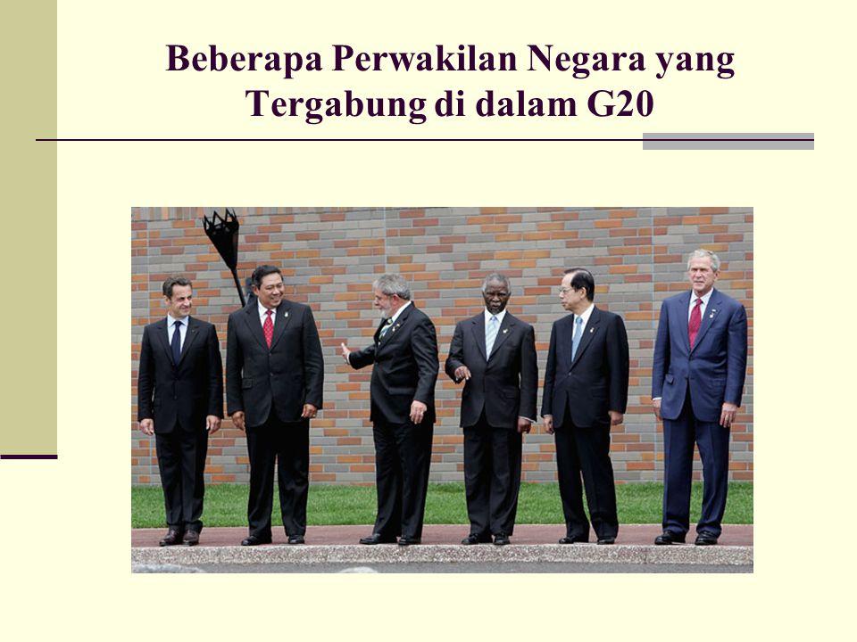 Beberapa Perwakilan Negara yang Tergabung di dalam G20