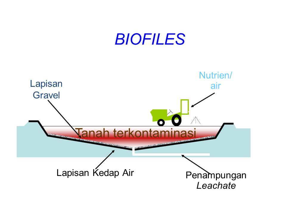 BIOFILES Tanah terkontaminasi Nutrien/ air Lapisan Gravel