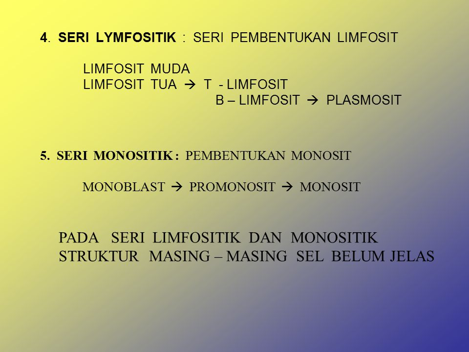 4. SERI LYMFOSITIK : SERI PEMBENTUKAN LIMFOSIT LIMFOSIT MUDA LIMFOSIT TUA  T - LIMFOSIT B – LIMFOSIT  PLASMOSIT