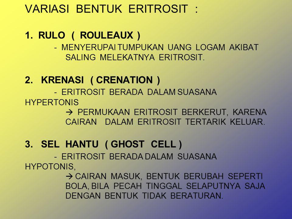 VARIASI BENTUK ERITROSIT : 1. RULO ( ROULEAUX )