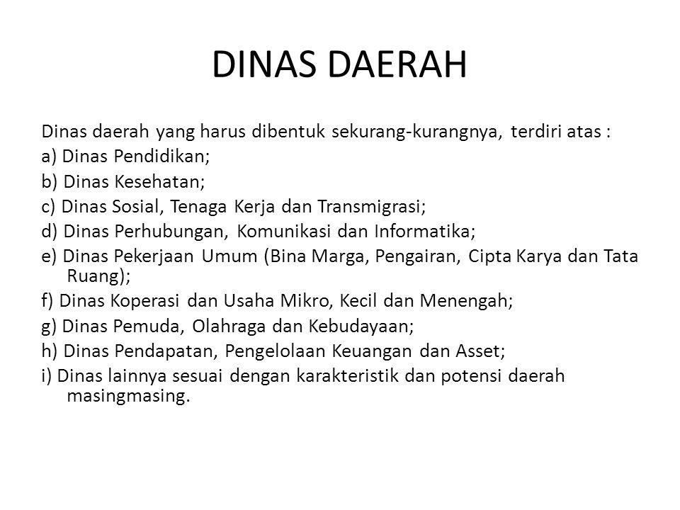 DINAS DAERAH