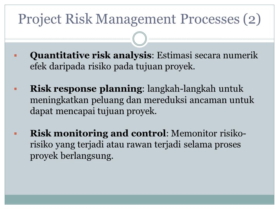 Project Risk Management Processes (2)