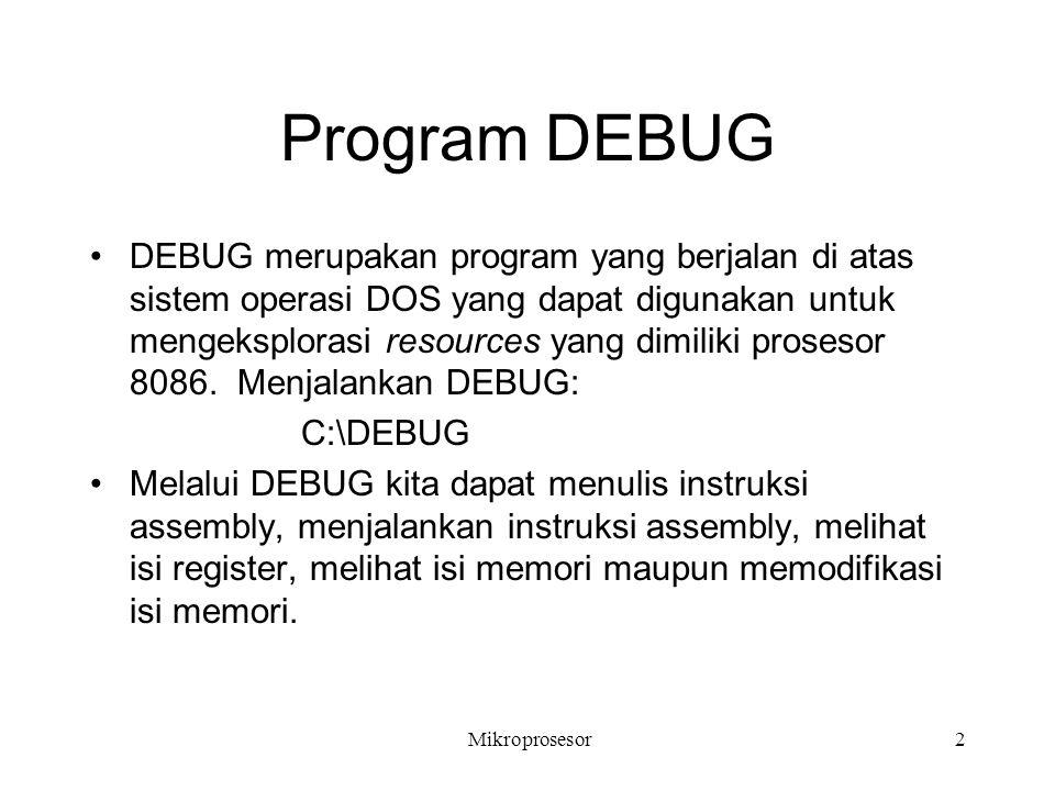 Program DEBUG