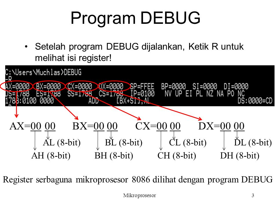 Program DEBUG AX=00 00 BX=00 00 CX=00 00 DX=00 00