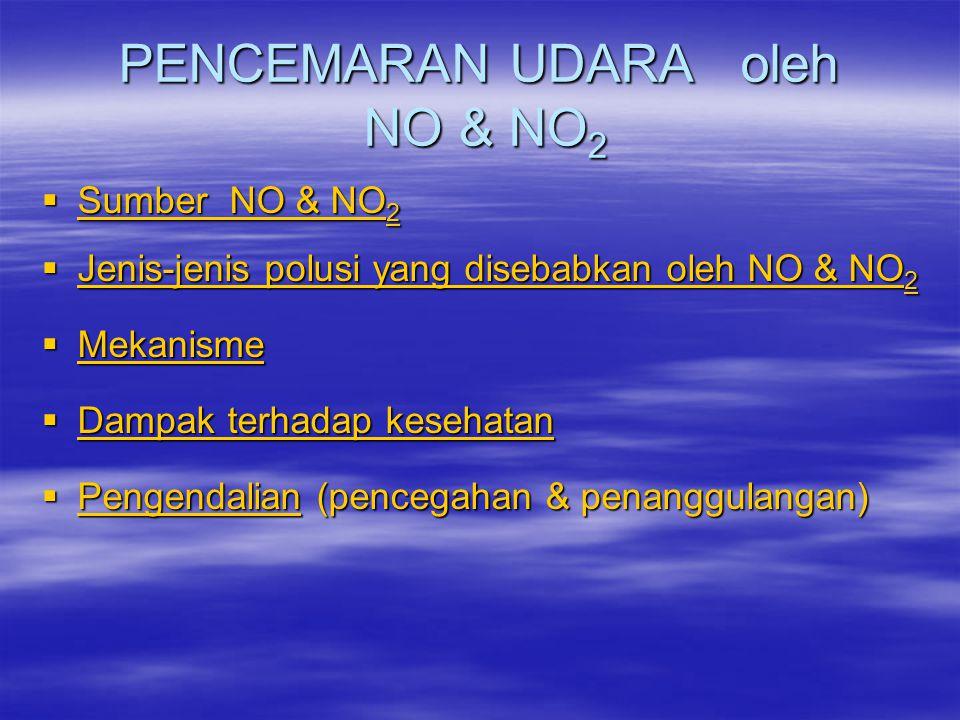 PENCEMARAN UDARA oleh NO & NO2