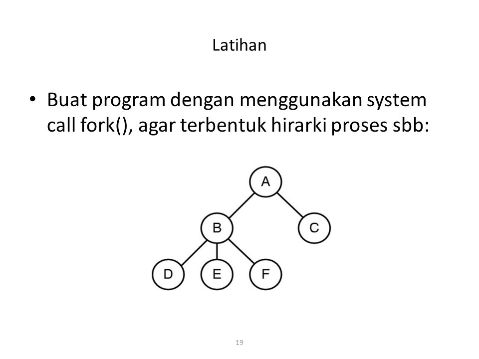 Latihan Buat program dengan menggunakan system call fork(), agar terbentuk hirarki proses sbb: